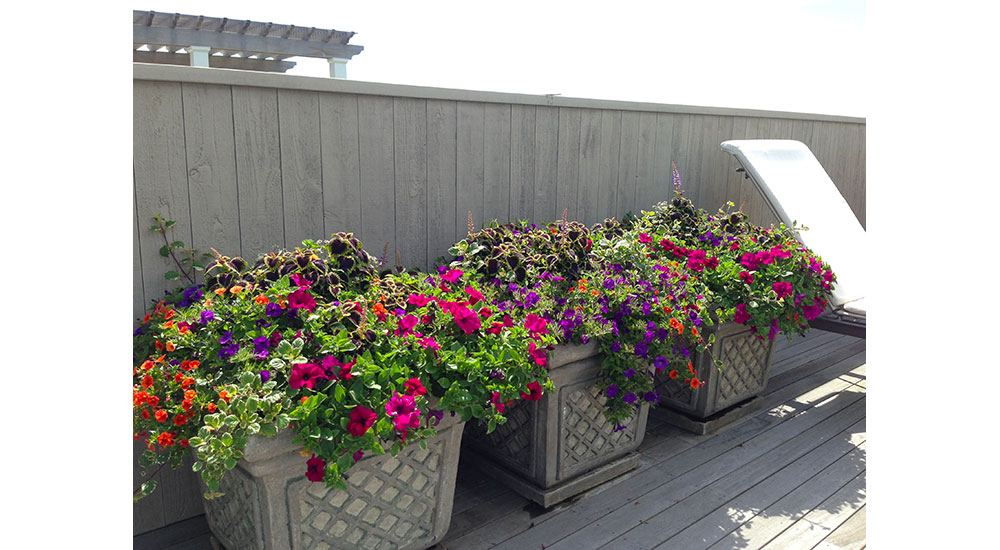 flower-pots-slider-005