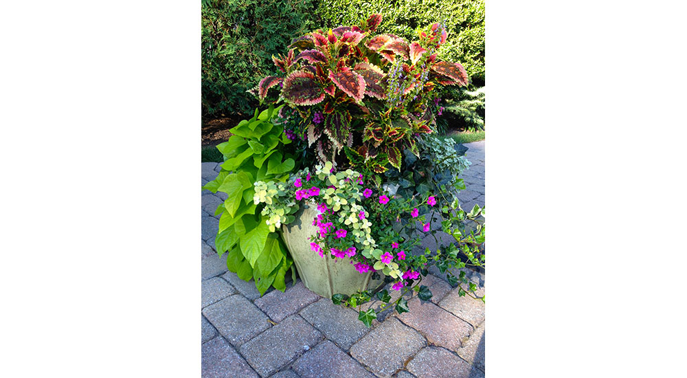 flower-pots-slider-009