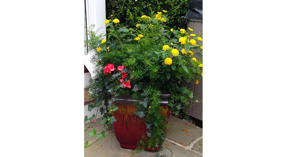 flower-pots-slider-014