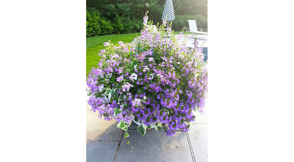 flower-pots-slider-016