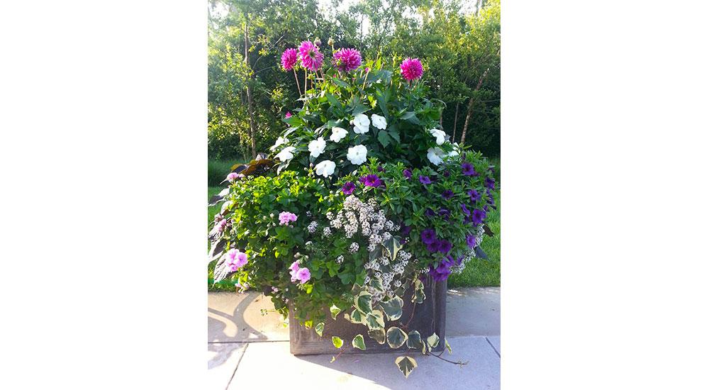 flower-pots-slider-017