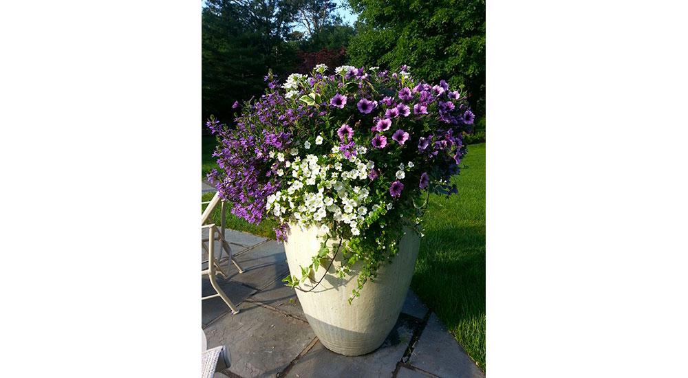 flower-pots-slider-018