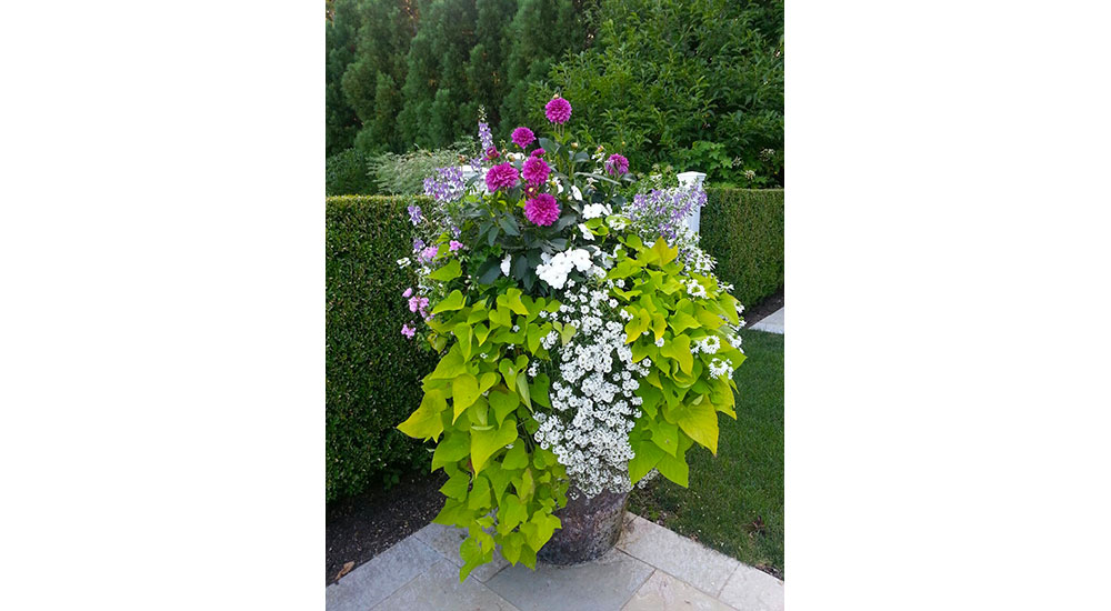flower-pots-slider-023