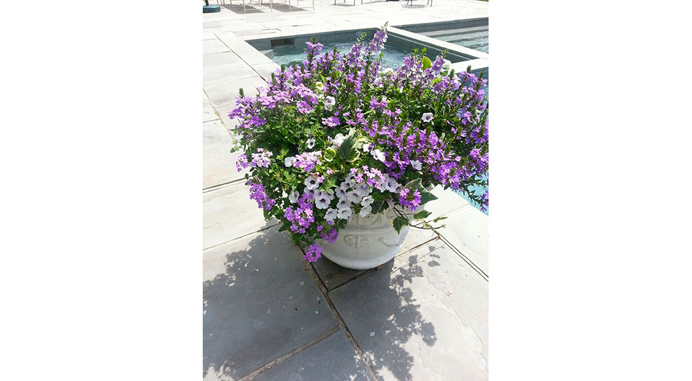 flower-pots-slider-024