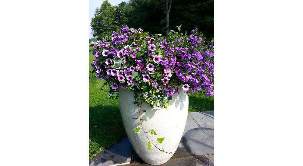 flower-pots-slider-026
