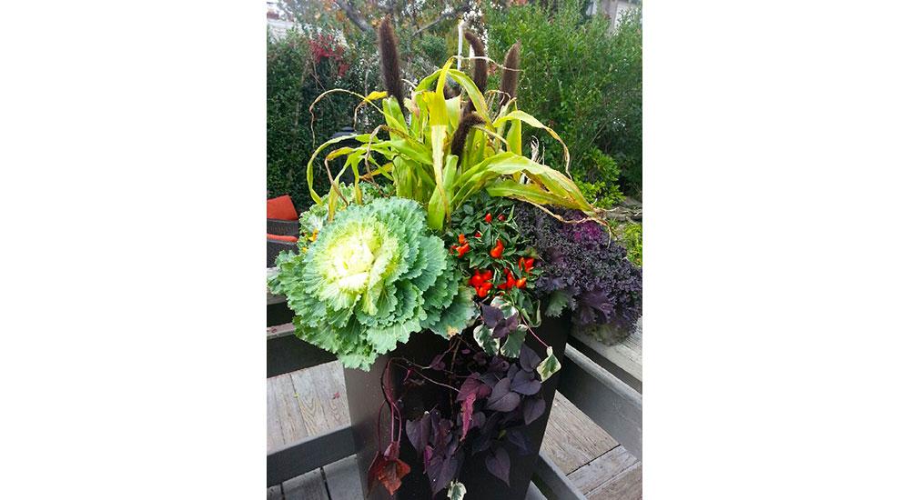 flower-pots-slider-049