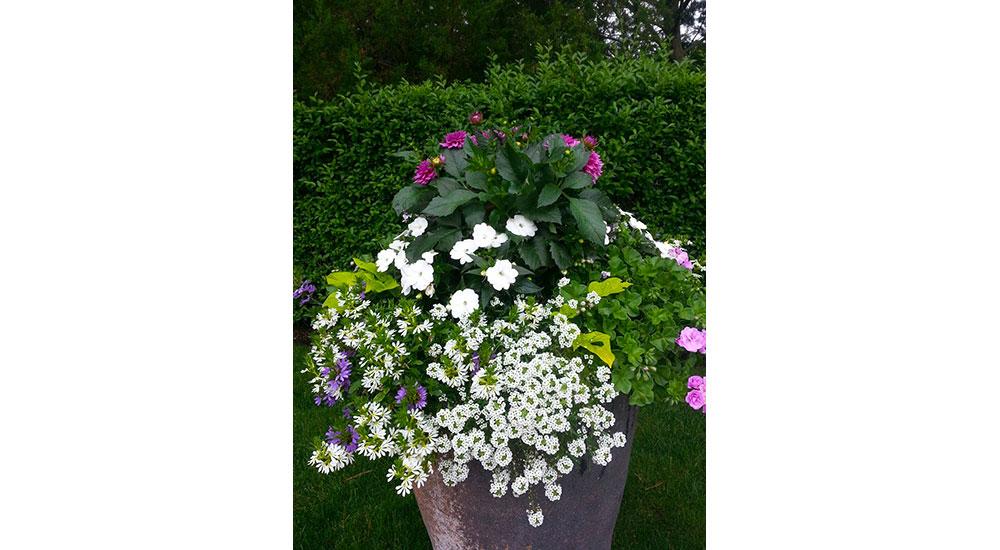 flower-pots-slider-062