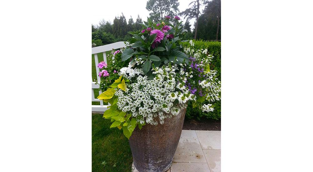 flower-pots-slider-063