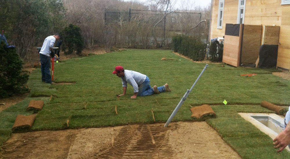 new-sod-lawns-slider-008